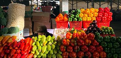 Verduras y frutas para combatir el calor