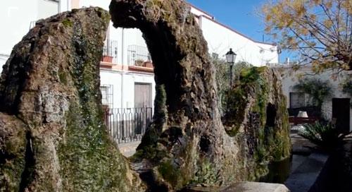 Fuente en Almocita Almería