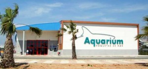 acuario-entrada