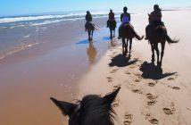 Ruta a caballo por Cabo de Gata