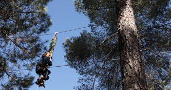 Bosque-Parque de tirolinas y juegos