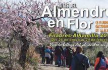 Diputación de Almería - Agenda Cultura y Deportes - Enero2019
