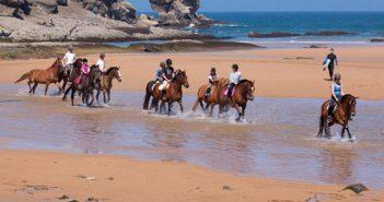 Ruta a caballo y ponis por Cabo de Gata, Almería