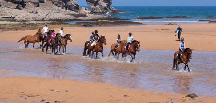 Ruta a caballo y ponis por Cabo de Gata Almería