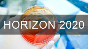 Programa Horizon 2020