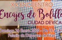 XV ENCUENTRO ENCAJES DE BOLILLO, Ciudad de Vícar
