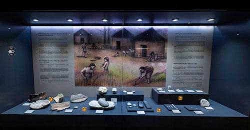fosiles Colección-Arqueológica-El-Ejido
