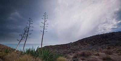 Exposición de fotografía - Almería, tierra de cine 2020