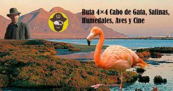 Ruta 4×4 Cabo de Gata, Salinas, Humedales, Aves y Cine