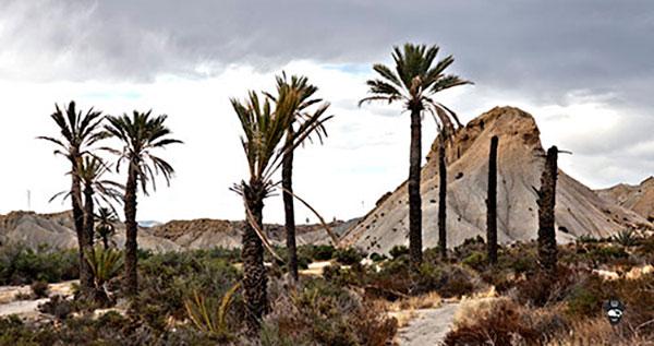 El Desierto de Tabernas, tesoro de la cultura cinematográfica europea