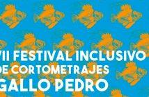"""VII Festival Inclusivo """"Gallo Pedro"""""""