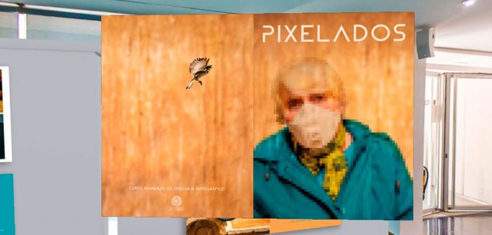 Exposición Pixelados - Sala de exposiciones virtual