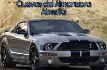 Exhibición de Ford Mustang