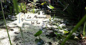 Jardín Botánico La Almunya del Sur