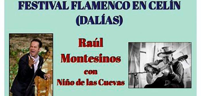 Festival Flamenco en Celín