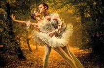 """""""CASCANUECES"""" Ballet Nacional Ruso"""